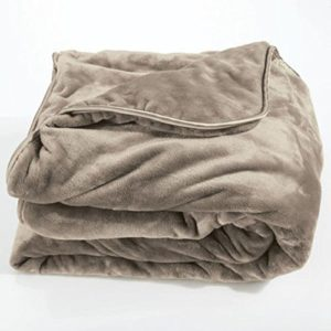 Brookstone Weighted Blanket Price