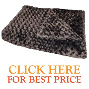 Buy Magic Blankets Reviews