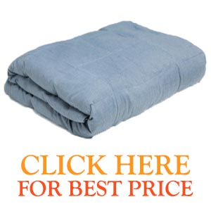 Weighted Comforts Blanket Price