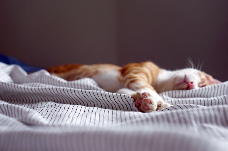 Improving Sleep, Relieve Stress Calm Down
