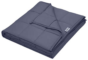 Zonli Weighted Blanket Price Amazon